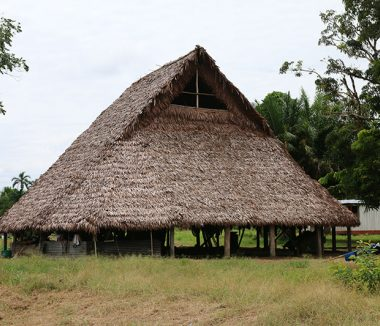 Malouca en La Tagua